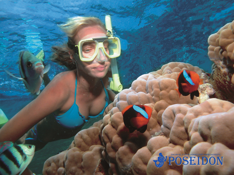 snorkeling the great barrier reef with poseidon cruises